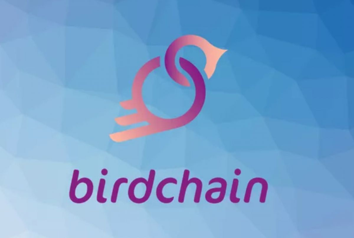 Former Member of IOTA Foundation & Dcntral.ai & E7 Ventures Founder Joins Birdchain as Advisor
